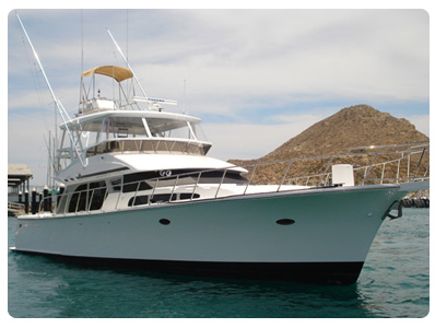 Cabo San Lucas Charters - Andale!